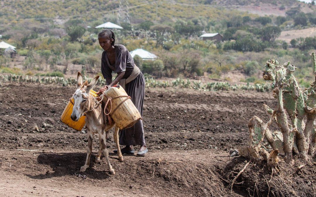 Ende der Armut – Die Wirkung von Mikrofinanz unter der wissenschaftlichen Lupe