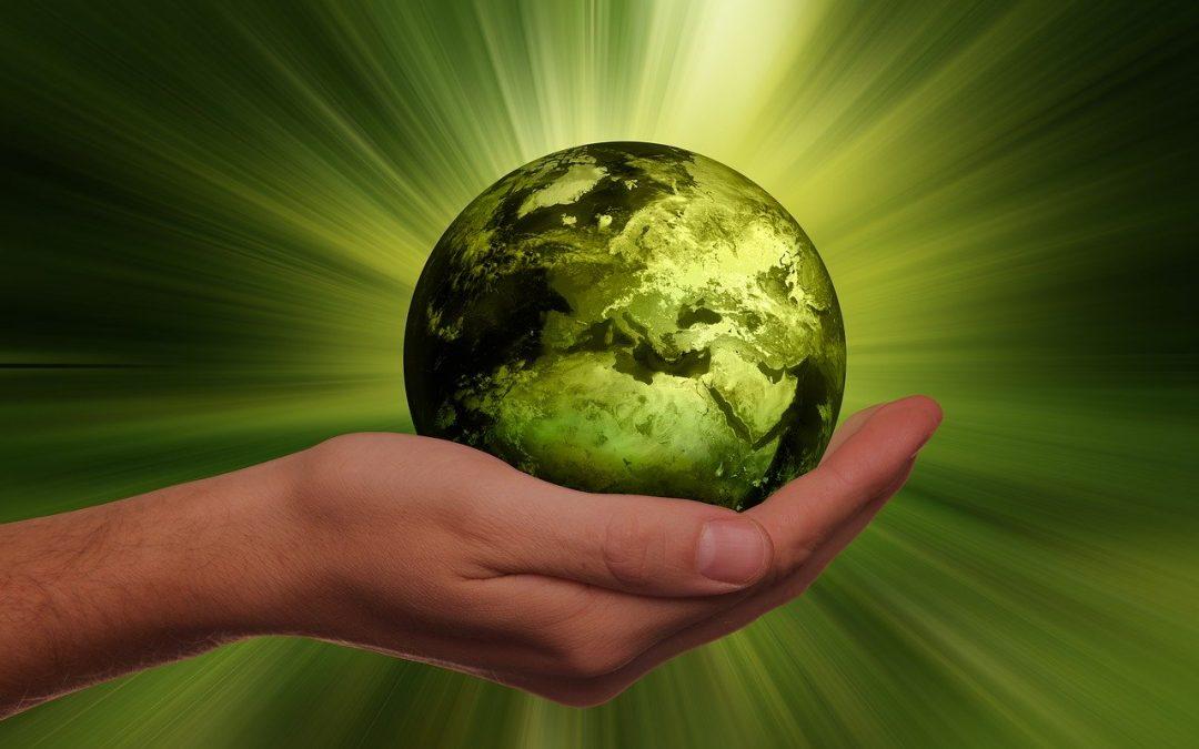 Nachhaltige Geldanlagen kommen auch global voran!